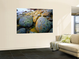 Granite Boulders at Wineglass Bay Wall Mural by Rob Blakers