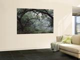 Oak Tree Forest after Storm Wall Mural by Douglas Steakley