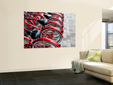 Red Bicycles for Hire Wall Mural by David Ryan