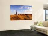 Old Tree Stump in Desert Wall Mural by Alfredo Maiquez