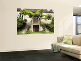 Double Stairway Leading into House Wall Mural by Barbara Van Zanten