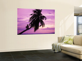 Young Boy in Palm Tree at Sunset Wall Mural by Greg Johnston