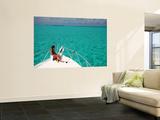 Cruising in Half Moon Caye Park Wall Mural by Uros Ravbar