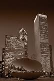Chicagos Millennium Park BW Fotografie-Druck von Steve Gadomski