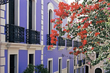 Colorful Balconies of San Juan, Puerto Rico Photographic Print by George Oze