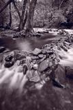 Pigeon Forge River Great Smoky Mountains BW Fotografie-Druck von Steve Gadomski