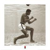Muhammad Ali Lámina