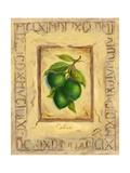 Italian Fruit Limes Premium-giclée-vedos tekijänä Marilyn Dunlap