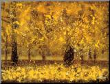 Golden Age Impressão montada por Pihua Hsu
