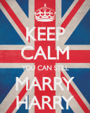 Keep Calm You Can Still Marry Harry Poster