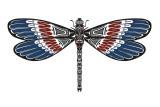 Totem Dragonfly Láminas por Matt James