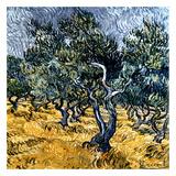 Oliveraie (Détail) Posters af Vincent van Gogh