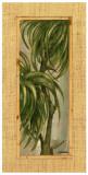 Tropical Leaf II Posters by L. Romero