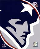 New England Patriots 2011 Logo Foto