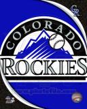 2011 Colorado Rockies Team Logo Photo