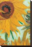 Twelve Sunflowers (detail) Kunst op gespannen canvas van Vincent van Gogh
