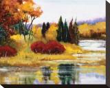 Colorado Fall Dream Bedruckte aufgespannte Leinwand von Judith D'Agostino