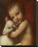 San Giovannino Opspændt lærredstryk af Bernardino Luini