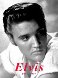 Elvis Targa di latta