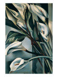 Arums II Premium Giclee-trykk av Tamara de Lempicka