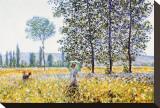 Field in Spring Reproducción de lámina sobre lienzo por Claude Monet