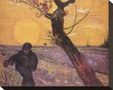 Sämann bei untergehender Sonne Bedruckte aufgespannte Leinwand von Vincent van Gogh