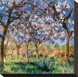 Printemps à Giverny Toile tendue sur châssis par Claude Monet