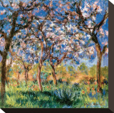 Spring in Giverny Opspændt lærredstryk af Claude Monet