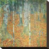 Birch Forest, ca. 1903 Opspændt lærredstryk af Gustav Klimt