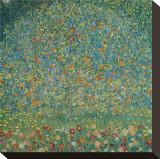 Apple Tree I, c.1912 Pingotettu canvasvedos tekijänä Gustav Klimt