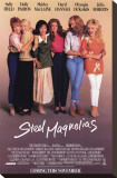 Steel Magnolias Stretched Canvas Print