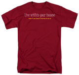 Within Your Income T-shirts
