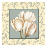 Tulips With Scroll Plakater af Catherine Jones