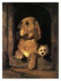 Dignity and Impudence Plakat af Edwin Henry Landseer