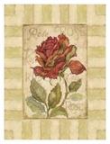 Belle Fleur I Prints by Betty Whiteaker