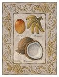 Tropische Früchte I Poster von Janet Kruskamp