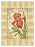 Belle Fleur II Print by Betty Whiteaker