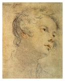 Head of a Youth Print by Matteo Rosselli