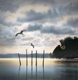 Circling Skies Poster von William Vanscoy
