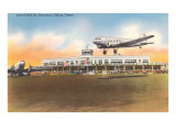 Terminal aérea Love Field en Dallas, Texas Lámina