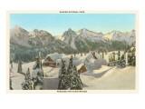 Rainier-Nationalpark im Winter, Washington Poster