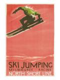 Ski Jumping Poster Poster