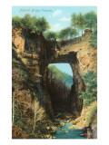 Natural Bridge, Virginia Poster