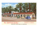 Date Gardens, Indio, California Posters
