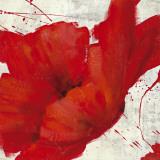 Petite Rouge I Prints by  Bridges