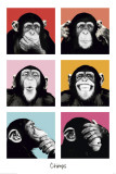 Les chimpanzés pop art Poster