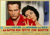 Cat on a Hot Tin Roof Masterprint
