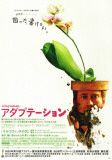 Adaptation, Japanese Poster Masterprint