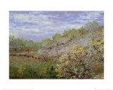 Bäume in Blüte Kunstdrucke von Claude Monet