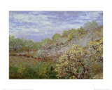 Baume in Blute Pôsters por Claude Monet